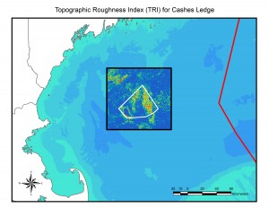 "Topographic roughness – essentially, small-scale bumpiness of the seafloor – is linked to the distribution and diversity of microhabitats that in turn support a diversity of species. Warmer colors indicate greater ""roughness"" and are linked to locations of species-rich communities. For example, the area of high roughness on the top of Cashes Ledge (right inside the proposed monument boundary) is where the kelp forest is located and a species diversity hotspot. Courtesy of Peter Auster and Michel McKee, Mystic Aquarium"